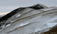 Monte Igno