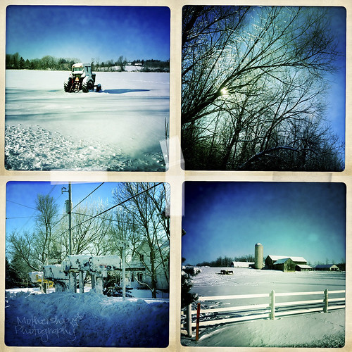 Vignettes of Manotick on a really cold but pretty winter afternoon
