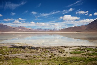 Εικόνα από Laguna Blanca. water wasser bolivia laguna bolivien lagunablanca