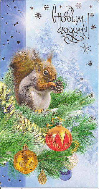 Merry Christmas-Squirrel