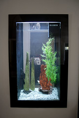 fish-tank-aquarium-custom-installed-bradenton-sarasota-florida-12