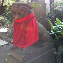 狛犬探訪 鹿島神社旧本殿は子連れではない。