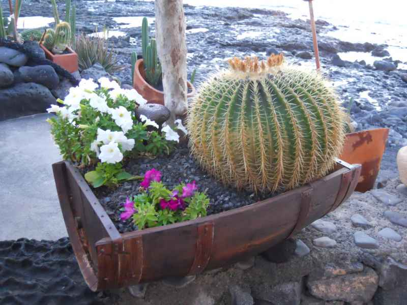 Jardineros en acci n decorar el jard n con macetas - Jardin con macetas ...