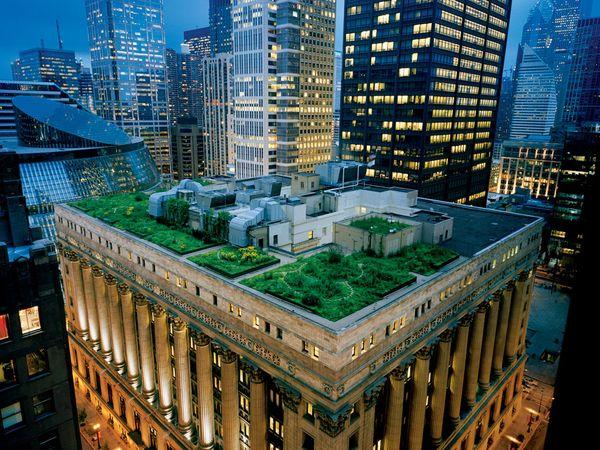 diane-cook-len-jenshel-green-roof_3964_600x450