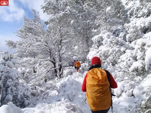 12-02-04 Mancor de la Vall -Comellas des Prat (42)