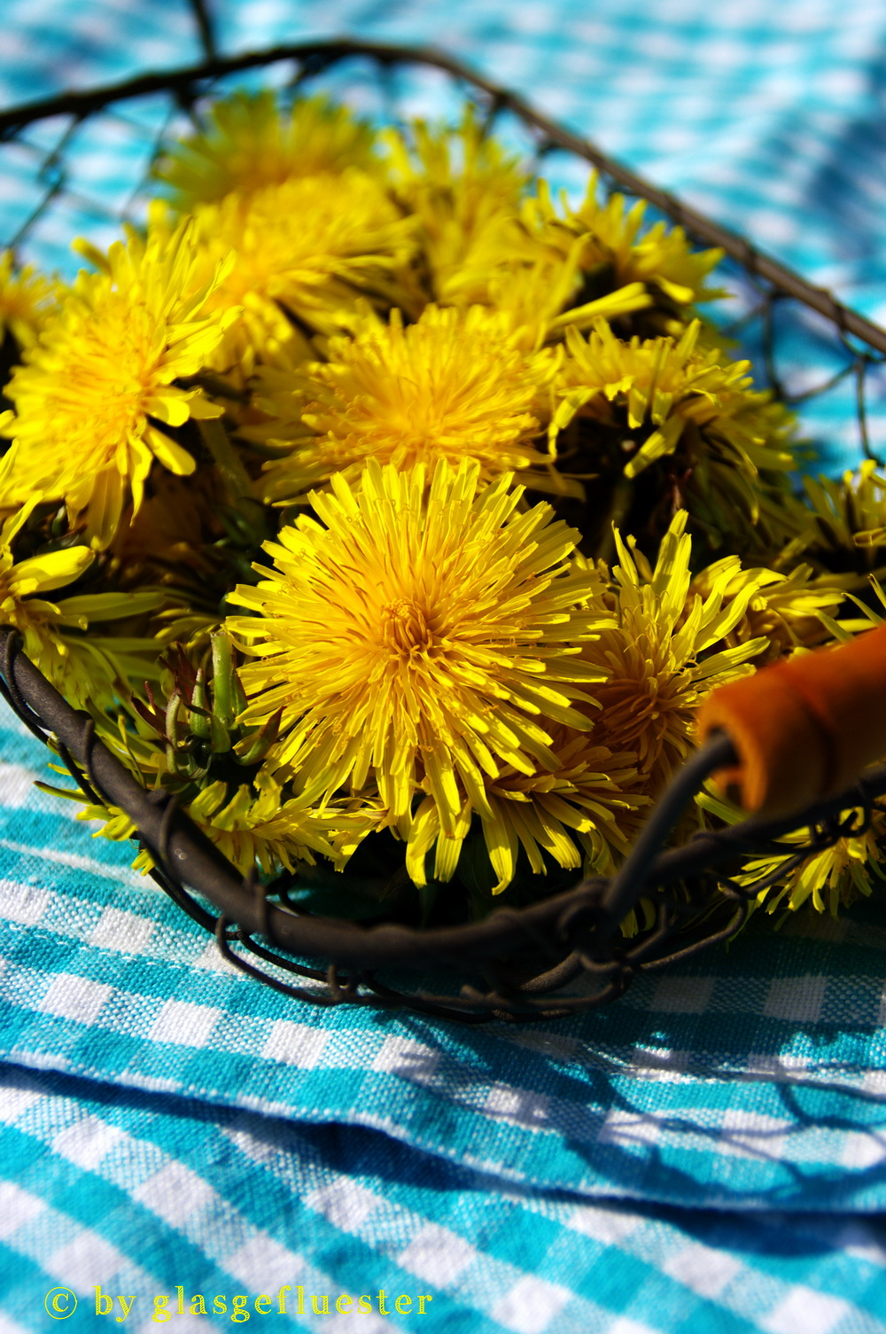 Löwenzahnblütenschnaps by Glasgefluester 1 klein