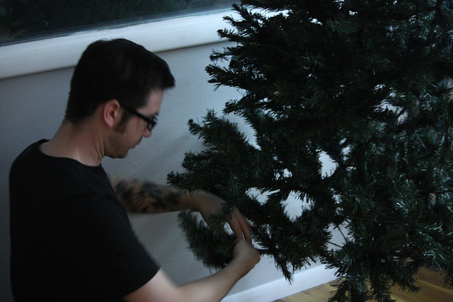 Eric setting up a tree