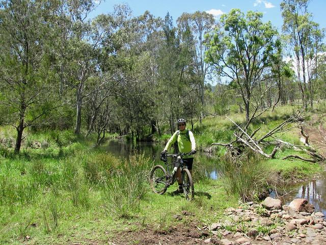 Millar Vale Creek