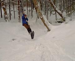 Snowshoe Swing
