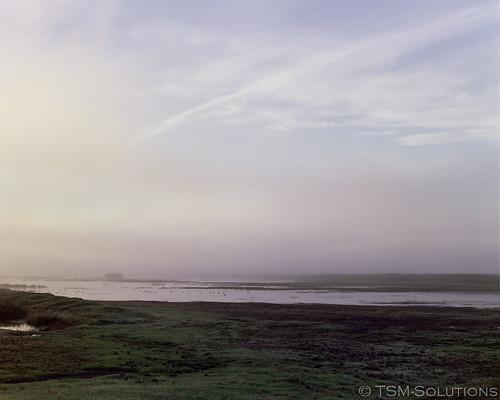 film sunrise iso400 sonoma mf 6x7 67105
