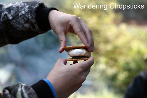 7 Campfire S'Mores and Other Breakfast Treats 4