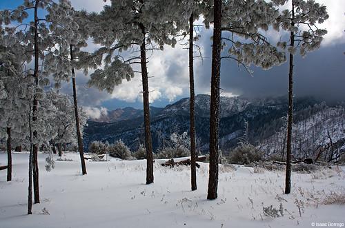 catalinamountains arizona snow canon rebel xsi mountains winter skyislands unitedstates america usa