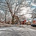 Front yard in winter HDR by Dave DiCello