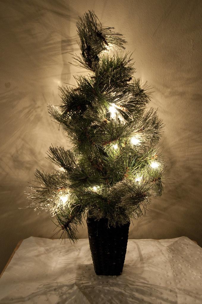 Real Christmas Trees Sydney