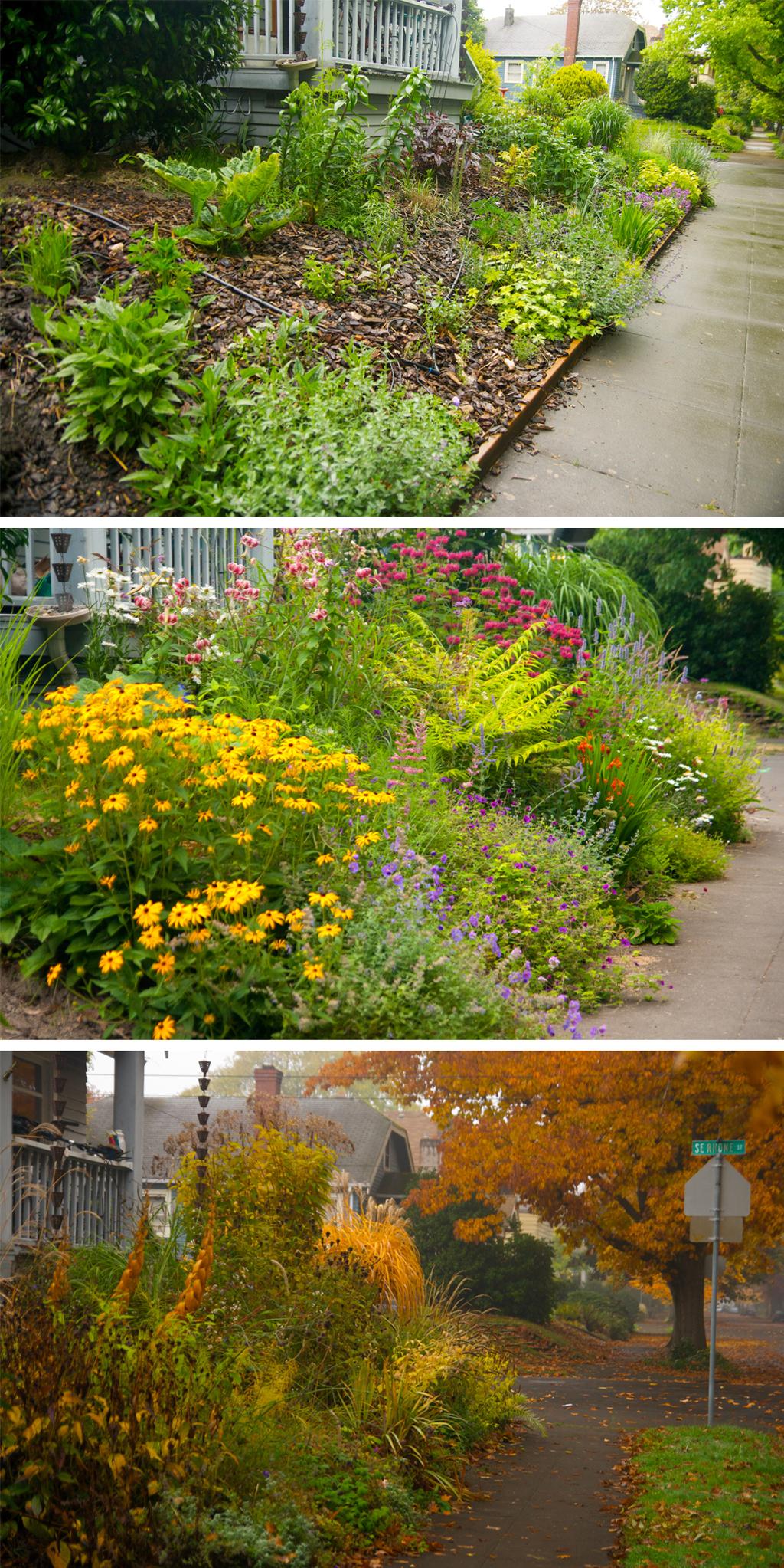 Front Garden Hor Triptych