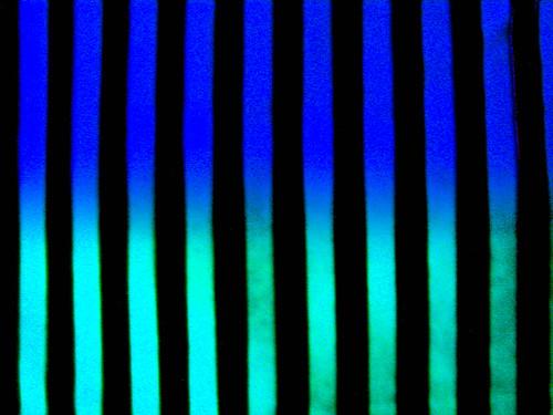 """265/365 """"Trazos y tildes"""" by LitoCG2"""