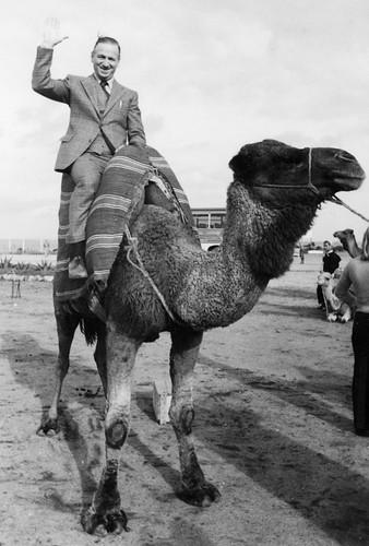Alvar Danielsson in Morocco