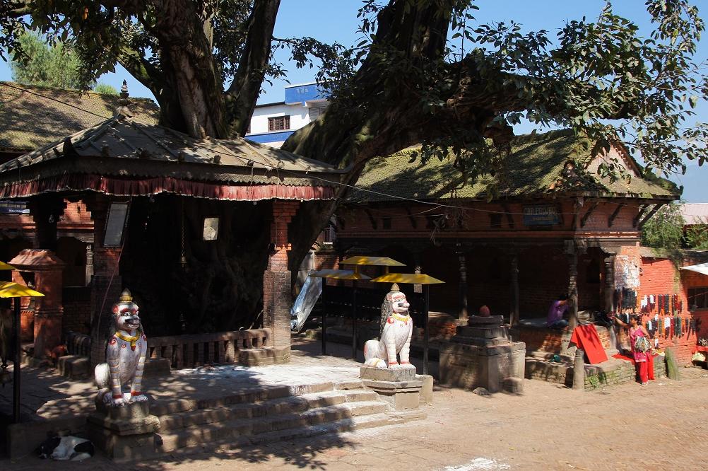 1007_Nepal_034