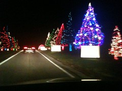 Heartwood acres holiday lights
