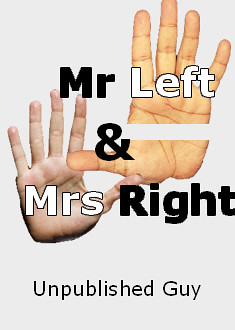 Mr Left and Mrs Right by Unpublished Guy, an allegorical polemic by a radical moderate