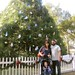Park Avenue - Winter Park by mingaling