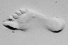 asphalt(0.0), white(0.0), sketch(0.0), snow(0.0), drawing(0.0), shadow(0.0), footprint(1.0), sand(1.0), monochrome photography(1.0), monochrome(1.0), black-and-white(1.0),