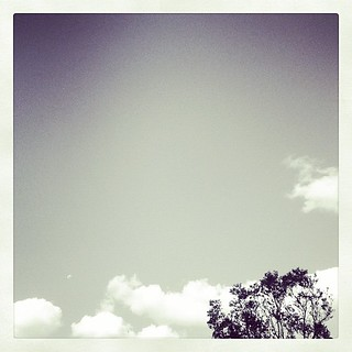 #cloud #sky #tree #simplicity #simple