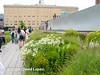 NYC High Line-7026931
