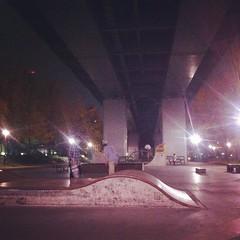 Wakamiya Skate Park