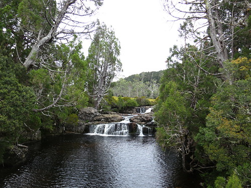"Cradle Mountain-Lake St.Clair National Park ""Enchanted Walk"""