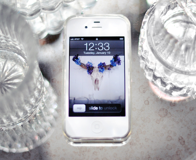 white iphone 4 - clear iphone case