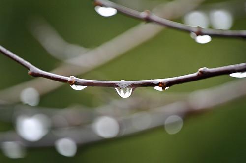 001 raindrops