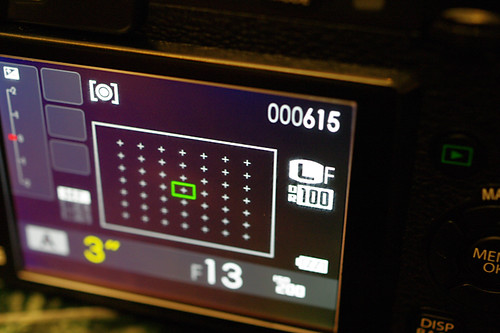 FUJIFILM X-Pro1 LCD Monitor