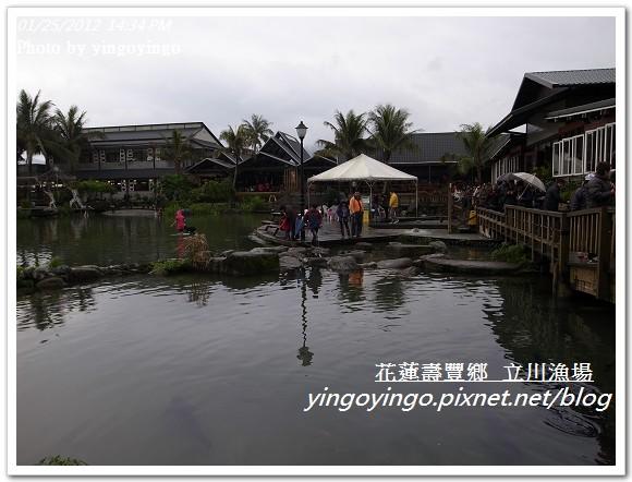 花蓮壽豐_立川漁場20120125_R0050831