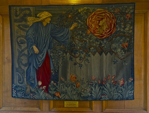 The Romance of the Rose in Rhodes House