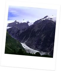 Fox Glaciers