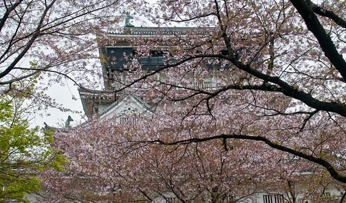 Kokura Spring