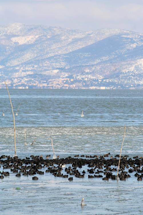 lago ghiacciato 3