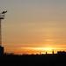 Seafield sunset