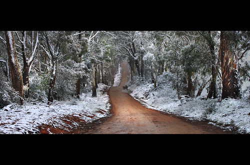 Wandering Through Winter || CENTRAL TABLELANDS