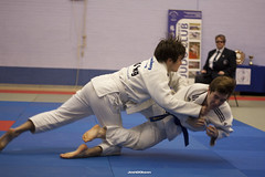 hapkido, individual sports, contact sport, sports, tang soo do, combat sport, martial arts, judo, japanese martial arts, jujutsu, brazilian jiu-jitsu,