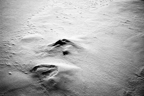 38/366 - Snow Abstract