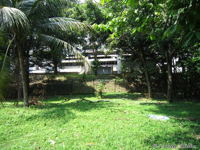 Old Jurong Line 18
