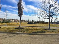 2016 Beautify Your Neighborhood