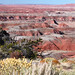 Small photo of Painted Desert