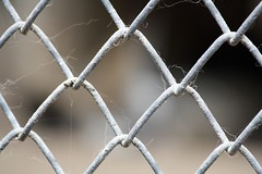 wire fencing, chain-link fencing, white, macro photography, net, close-up, iron,