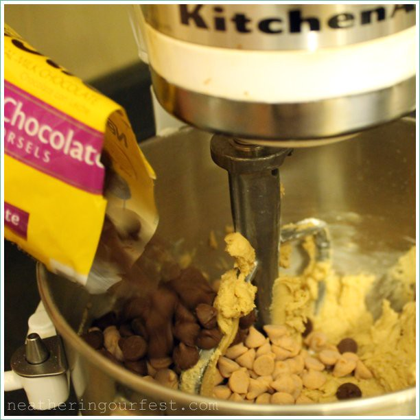 add chocolate chips