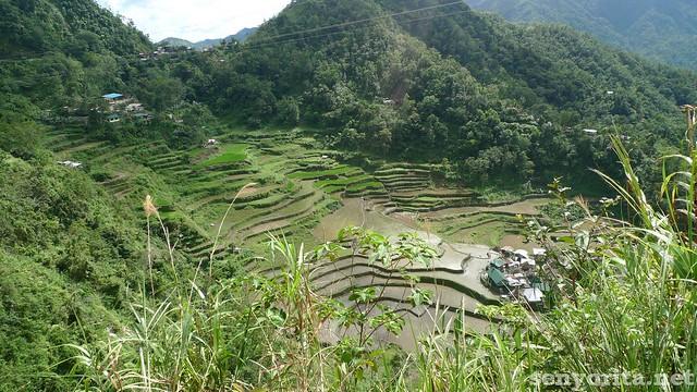 Batad-Ifugao-P2-183
