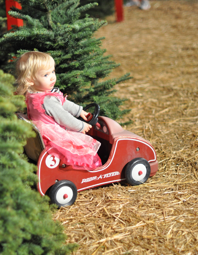 Delilah-radio flyer car-christmas tree lot