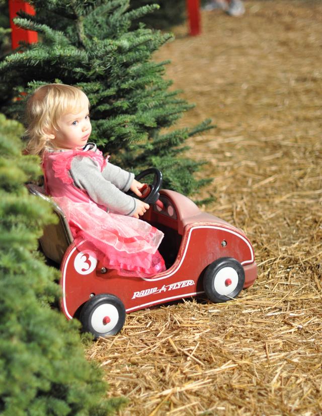 Delilah-radio flyer car-christmas tree lot